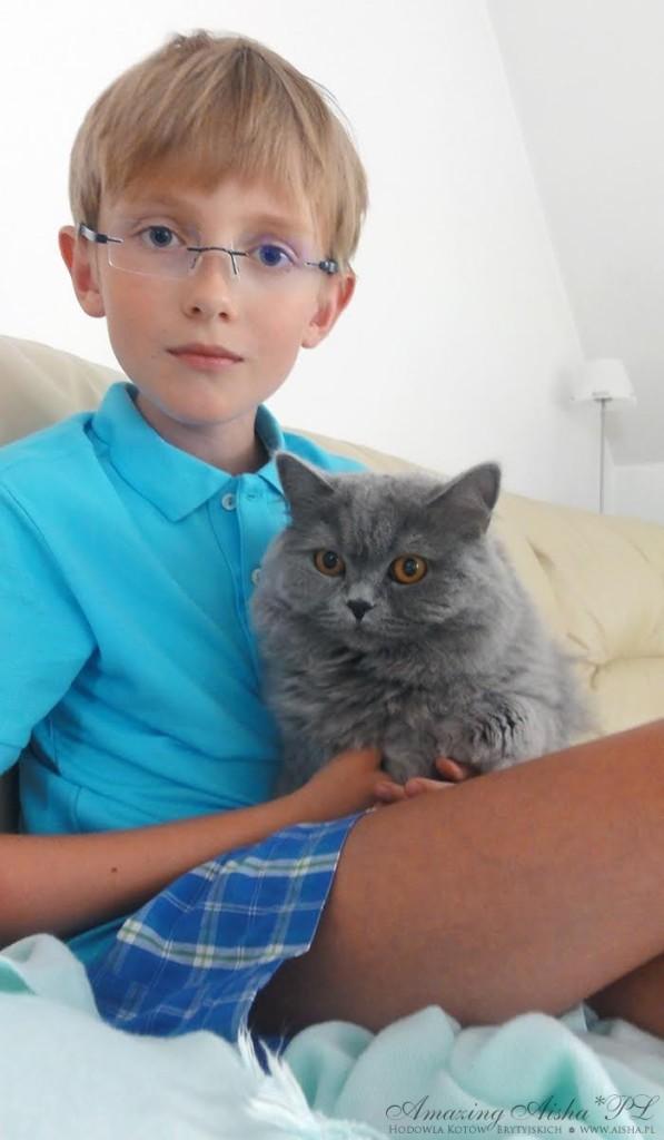 08-2015  kot brytyjskiniebieski w Nowym domku