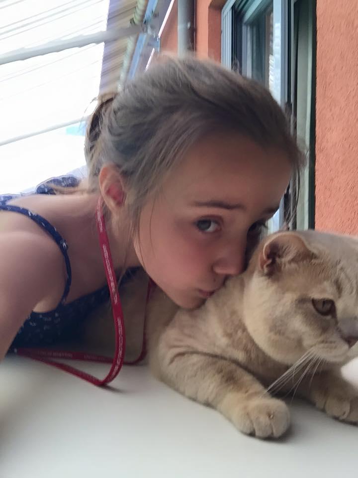 kot brytyjski kremowy- Kremuś w Nowym domku 06 2015